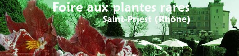 St priest 2016-770x180