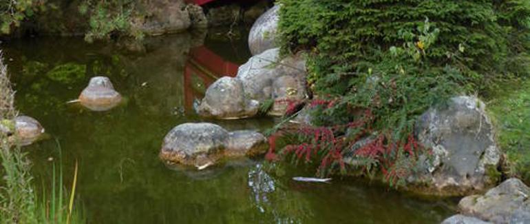 Val d'Oise Jardin-Japon