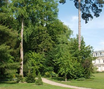 Etude historique et patrimoniale du parc paysager de la Préfecture - Bourg-en-Bresse (01)