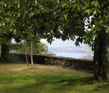 Vue sur le Lac du Bourget sous les alignements