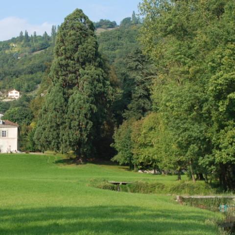 Etude patrimoniale des jardins de La Buisse